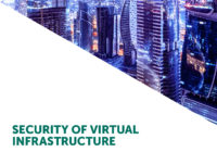 Security of Virtual Infrastructure IT Security Risks Special Report